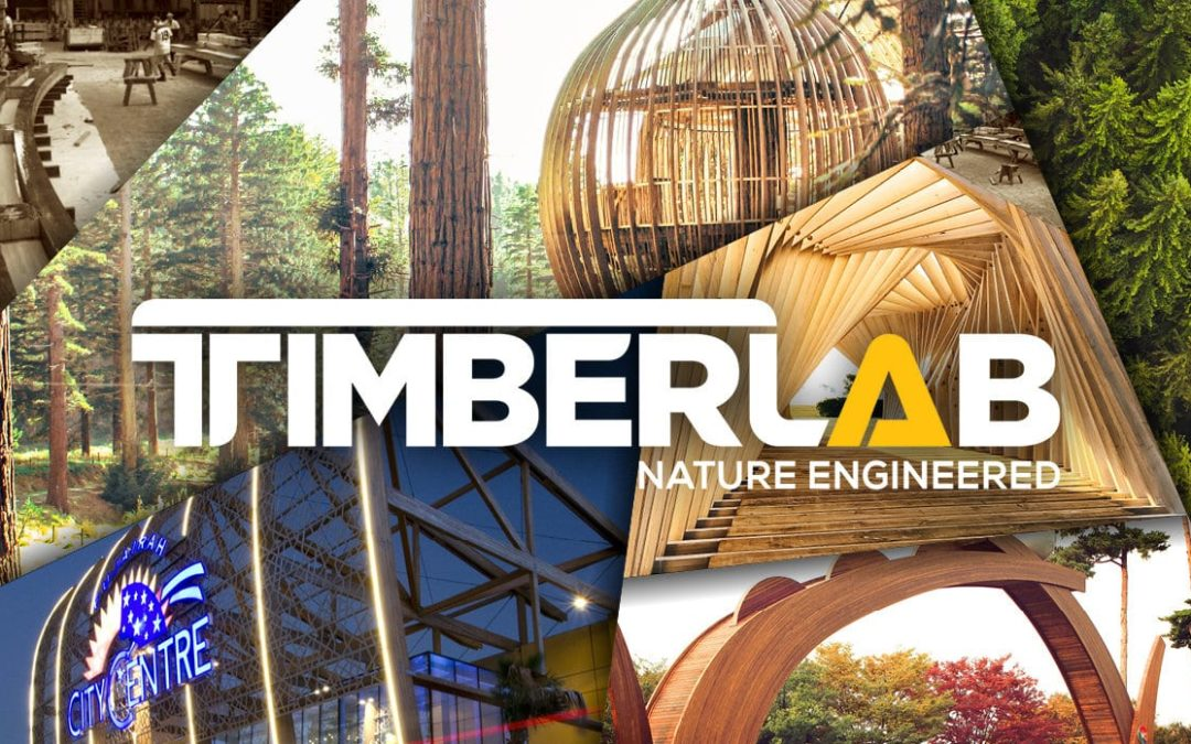 TimberLab Celebrates 60 Years