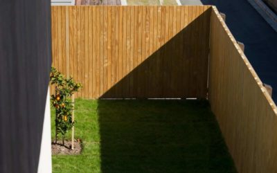 Striking timber fencing with Abodo's Sand Screening
