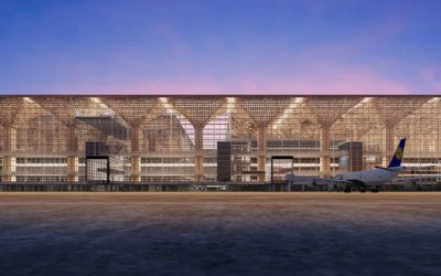 Tall Timber for Airport Terminals